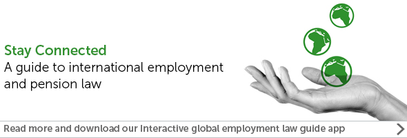 Global employment guide